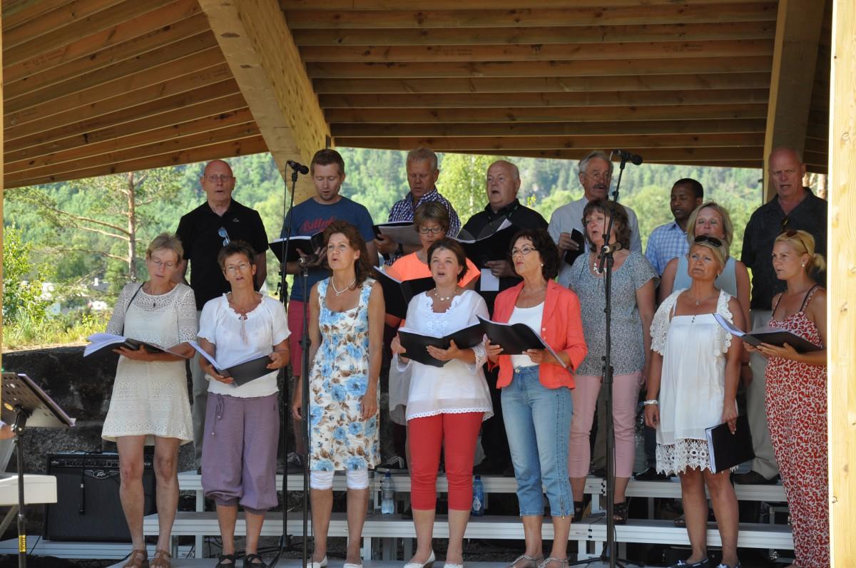 Allsang på øya ved Furuly 15. juni 2014 - 1