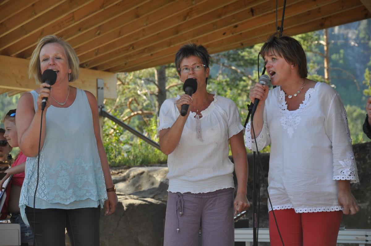 Allsang på øya ved Furuly 15. juni 2014 - 5