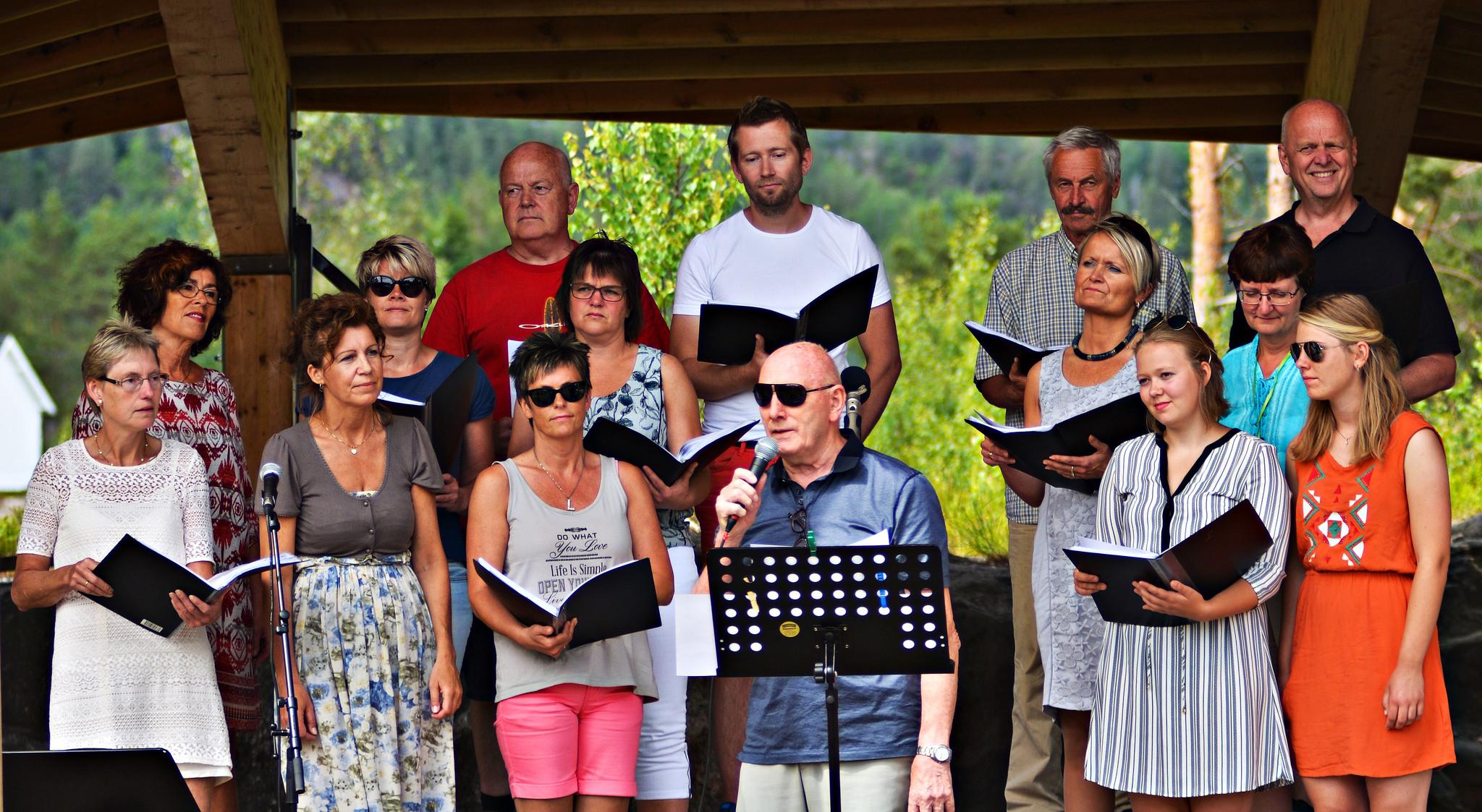 Friluftskonsert Furuly fritidspark Evje juni 2016. Foto Geir Dåsvatn